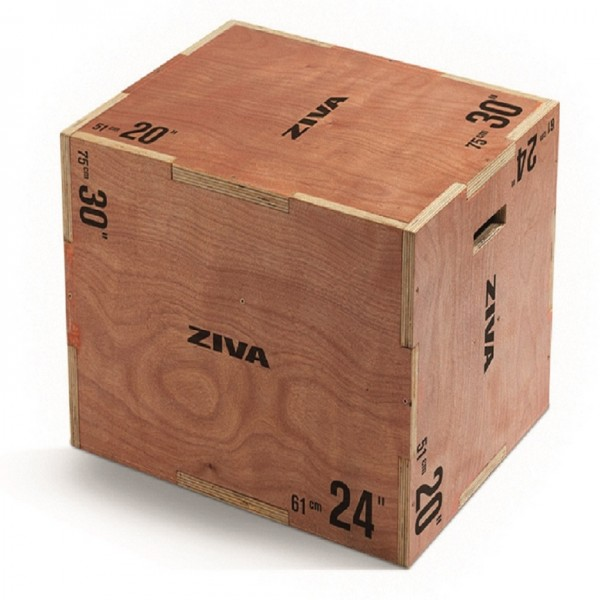 Pylobox 3-in-1 Holz